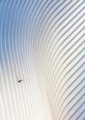 Fotos: Hufton + Crow